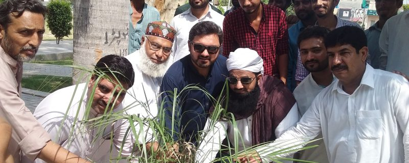 ATI depalpur launched campaign for green pakistan