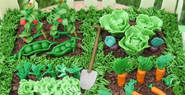 kichen gardening seminar in okara