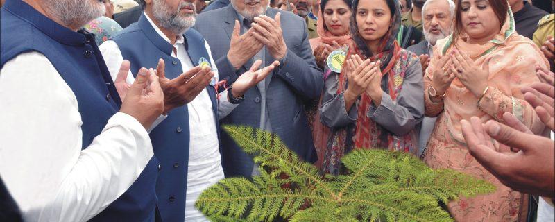 information minister punjab syed samsam bukhari plantation in shahbaz sharif park