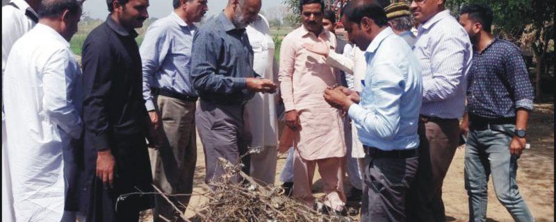 okara,syed zafaryab haider on agriculture