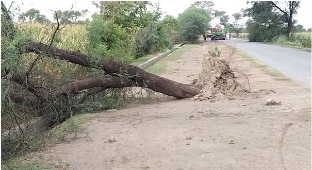 دیپالپور اوکاڑہ میں طوفانی بارش سے سولہ افراد جاں بحق