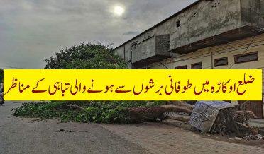 ضلع اوکاڑہ میں طوفانی بارش نے تباہی مچادی
