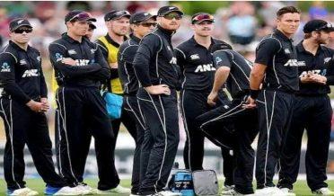 نیوزی لینڈ کی شکست پر سوشل میڈیا صارفین کی دلچسپ جملے بازی